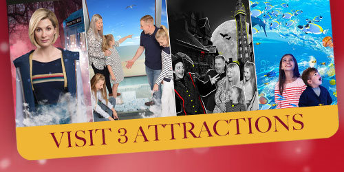 Multi Attraction Ticket 3